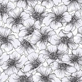 Endless Floral pattern Stock Photography