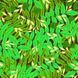 Floral pattern. Vector seamless floral pattern with multiple leaves and foliage hand drawn in bright spring green colors on dark background for spring summer stock illustration