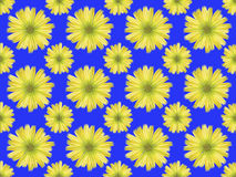 Floral Pattern Wallpaper Royalty Free Stock Image