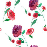 Floral pattern on white background. Seamless Royalty Free Stock Photos
