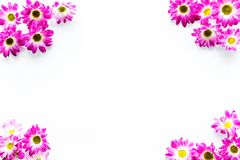 Floral pattern with pink flowers on white background top view copyspace Royalty Free Stock Image