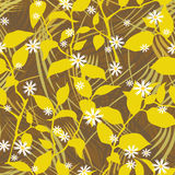 Floral Pattern With Daisies Stock Photography
