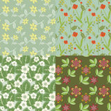 Floral patterns Stock Image