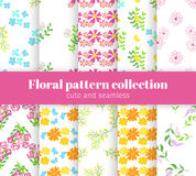 Floral patterns collection. Spring and summer flowers and  butterfly on white background patterns Royalty Free Stock Photos
