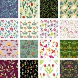 Floral patterns Royalty Free Stock Image