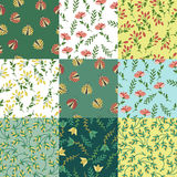 Floral patterns set Stock Photography