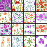 Floral patterns set Stock Images
