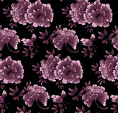 Floral σχέδιο Peony στο μαύρο υπόβαθρο Στοκ εικόνες με δικαίωμα ελεύθερης χρήσης