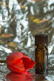 Floral perfume bottle and tulip Royalty Free Stock Photo