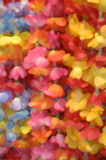 Floral Petals Royalty Free Stock Photo