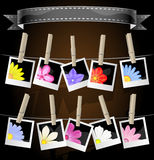 Floral photo album display Royalty Free Stock Photo