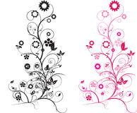 Floral pink Stock Image
