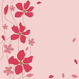 Floral pink background Stock Images