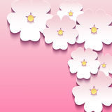 Floral pink background with 3d flowers sakura Royalty Free Stock Image