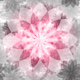 Floral pink-gray seamless pattern Stock Photos