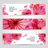 Floral and plant backgrounds collection Royalty Free Stock Image
