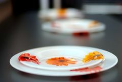 Floral plates , low depth Stock Images