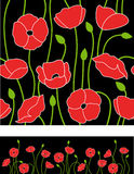 Floral poppy vector background Royalty Free Stock Image