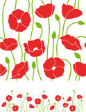 Floral poppy vector background Stock Photos
