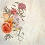 Floral postcard Royalty Free Stock Photos