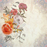 Floral postcard Royalty Free Stock Photo