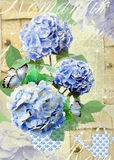 Floral postcard with hydrangea flowers and dandelion seeds. Royalty Free Stock Photos
