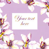 Floral postcard - white orchid flower and text space. Hand painted aquarell drawing Stock Photos