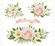 Floral poster banner card Design: peach orange Dahlia Anemone fl Royalty Free Stock Image