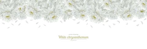 Floral posters, banners, greeting card - white chrysanthemums vector illustration