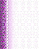 Floral Purple Background Border white broderie Stock Photography