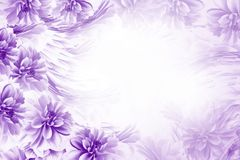 Floral purple-white beautiful background. Composition of flowers blue-white dahlias. Postcard for the holiday. Nature. Stock Image