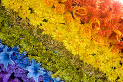 Floral rainbow. Rainbow made with multicolored  flowers Stock Photos