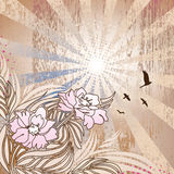 Floral Rays. Floral etching on detailed background. All elements on separate layer, easily edited Stock Photo