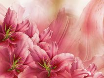 Floral  red-pink  beautiful background.  Flower composition  of lily flowers.  Close-up. Royalty Free Stock Photos