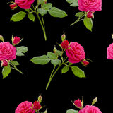 Floral red rose seamless pattern Stock Photography
