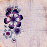 Floral retro background Stock Image