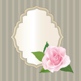 Floral retro frame with flower rose posy. Set of cute frame. Victorian ornaments photo frames in vector Stock Image