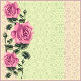 Floral retro seamless pattern (roses) Stock Photos