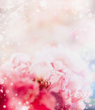 Floral romantic abstract pastel border background with red flowers Stock Photos