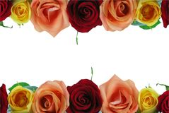 Floral Rose Border Royalty Free Stock Photos