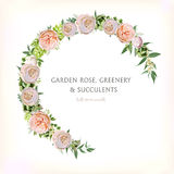 Floral Rose circle round Wreath with Eucalyptus green Succulent Stock Photo