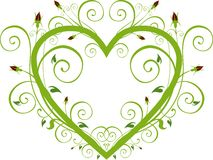 Floral Rose Heart Royalty Free Stock Images