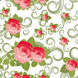 Floral Rose pattern royalty free stock images