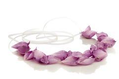Floral rose petal necklace Stock Image
