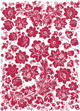 Floral rosy design on white Stock Photo