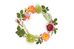 Floral round crown wreath with flowers and leaves. Flat lay, top view. Creative arrangement with pink and orange roses, gray grefsheim spiraea cinerea leaves Stock Photography