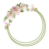 Floral round frame Stock Photos