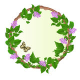 Floral round  frame Lilac with Butterfly Melanargia galathea vintage vector festive  background  illustration editable Stock Images