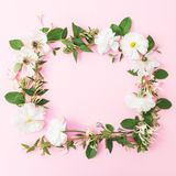 Floral round frame made of white flowers on pink background. Flat lay, top view. Pastel background. Royalty Free Stock Images
