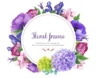 Floral round frame with pink and blue anemones, iris, clematis and leaves. Watercolor painting. stock illustration